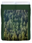1a9502-trees Lit Up, Wy Duvet Cover