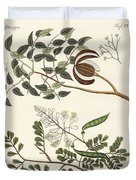 Trees From Hot Countries Duvet Cover