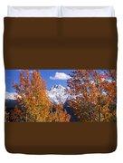 Trees In Autumn, Colorado, Usa Duvet Cover
