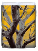 Winter Trees In Yellow Gray Mist 1 Duvet Cover
