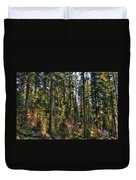 Trees With Moss In The Forest Duvet Cover