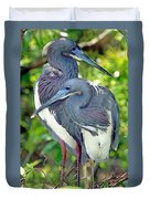 Tricolor Heron Adults In Breeding Duvet Cover