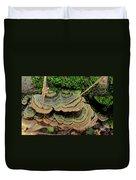 Tricolor Turkeytail Duvet Cover
