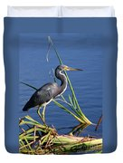 Tricolored Heron At The Pond Duvet Cover