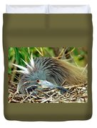 Tricolored Heron Incubating Eggs Duvet Cover