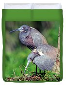 Tricolored Heron Male And Female At Nest Duvet Cover