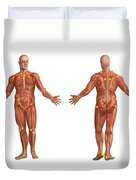 Trigger Points On The Human Body Duvet Cover
