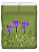 Trio In Violet Duvet Cover