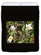 Trio Of Bloodroot Flowers Duvet Cover