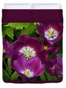Triumph Tulips Negrita Variety Duvet Cover