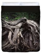 Troots Of A Fallen Tree By Wawa Ontario Duvet Cover
