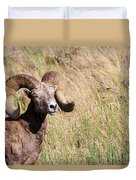 Trophy Bighorn In The Grass Duvet Cover