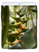 Tropical Fountain Of Seeds Duvet Cover