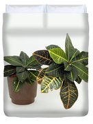 Tropical Houseplant Duvet Cover
