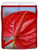 Tropical Red Anthurium Duvet Cover