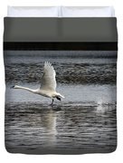 Trumpeter Swan Walking On Water Duvet Cover