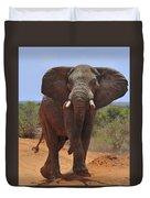 Tsavo Elephant Duvet Cover