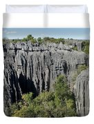 Tsingy De Bemaraha Madagascar 1 Duvet Cover