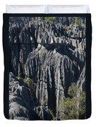 Tsingy De Bemaraha Duvet Cover