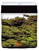 Tuckamore At Green Point Coastal In Gros Morne Np-nl Duvet Cover
