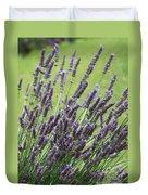 Tuilieres Lavender Duvet Cover