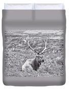 Tule Elk In Black And White  Duvet Cover
