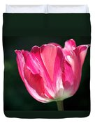 Tulip Painted In Shades Of Pink Duvet Cover by Rona Black
