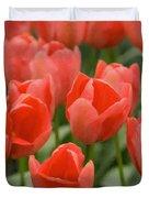 Tulips 33 Duvet Cover