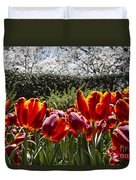 Tulips At Dallas Arboretum V41 Duvet Cover