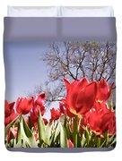 Tulips At Dallas Arboretum V62 Duvet Cover