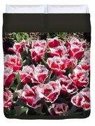 Tulips At Dallas Arboretum V70 Duvet Cover