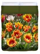 Tulips At Dallas Arboretum V71 Duvet Cover