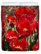 Tulips At Dallas Arboretum V83 Duvet Cover