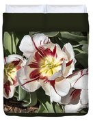 Tulips At Dallas Arboretum V91 Duvet Cover