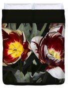 Tulips At Dallas Arboretum V92 Duvet Cover