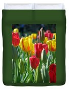 Tulips - Field With Love 22 Duvet Cover