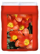 Tulips - Field With Love 25 Duvet Cover