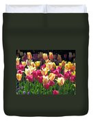 Tulips - Field With Love 35 Duvet Cover