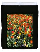 Tulips - Field With Love 50 Duvet Cover