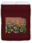 Tulips - Field With Love 56 Duvet Cover