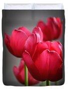 Tulips In The  Morning Light Duvet Cover