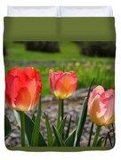Tulips Red Pink Tulip Flowers Art Prints Duvet Cover