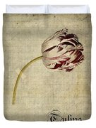 Tulips - S01bt2t Duvet Cover