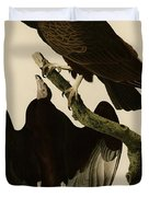 Turkey Buzzard Duvet Cover by Celestial Images