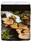 Turkey Tail Bracket Fungi Duvet Cover