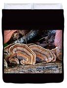 Turkey Tail Fungi In Autumn Duvet Cover