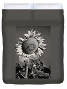Turkish Sunflower 3 Duvet Cover