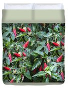 Turks Cap And Rain Drops Duvet Cover