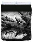 Turtle Bffs Bw By Denise Dube Duvet Cover