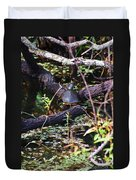 Turtle In The Glades Duvet Cover